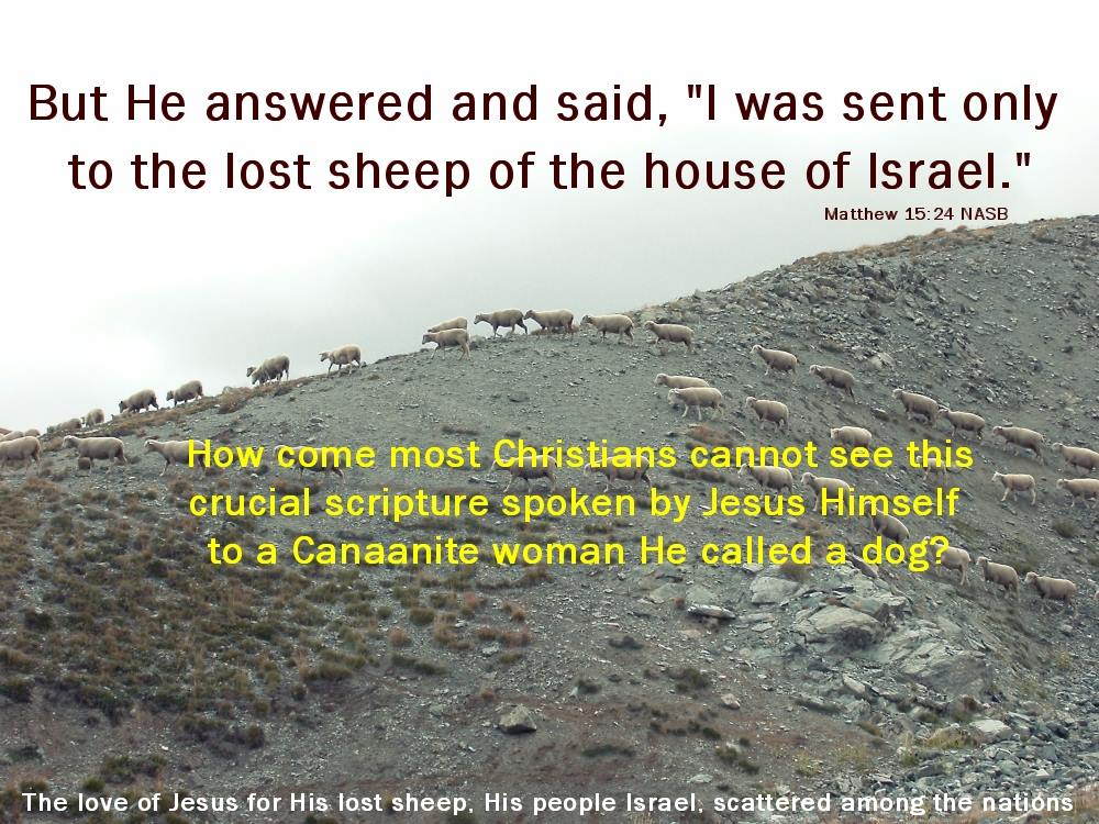 I was sent only to the lost sheep of the house of Israel Matthew 15:24